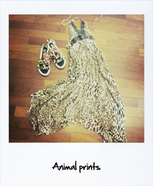 Animal print 4