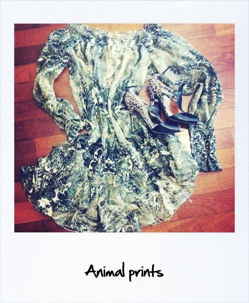 Animal print 3